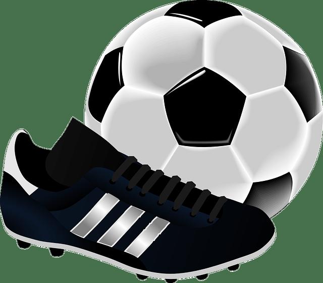 Novidades do mercado da bola: veja os reforços já contratados para o seu time