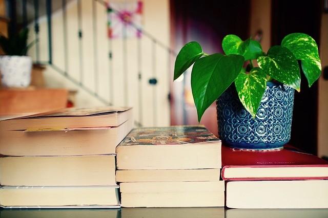 Liceu Literário abre inscrições para pós-graduação gratuita