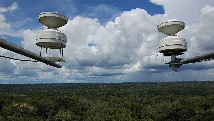 Foto/ divulgação Instituto Nacional de Pesquisas da Amazônia (Inpa/MCTIC)