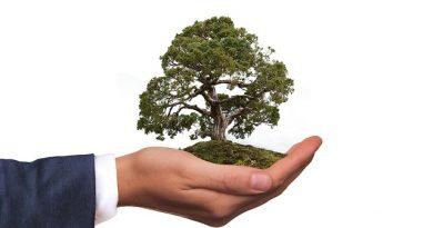 COMAFEN seleciona profissionais da área ambiental