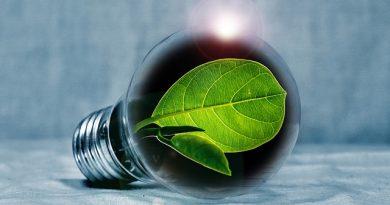 FURG abre inscrições para especialização a distância em Educação Ambiental