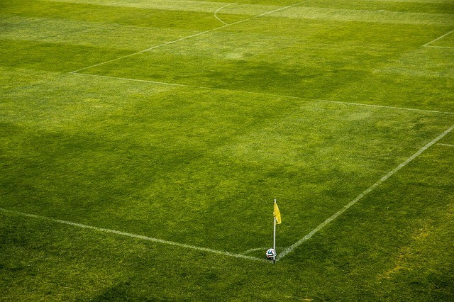 Fluminense x Portuguesa