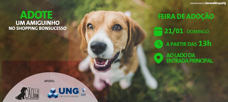 Shopping de Guarulhos promove feira de adoção de animais