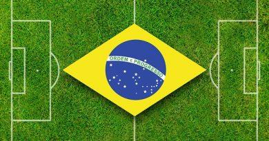 Quantas vezes o Brasil ganhou a Copa? Qual jogador marcou mais gols pela seleção brasileira? Qual o nome do técnico da seleção brasileira? Quantas seleções participam da Copa do Mundo 2018? Qual o nome da bola da Copa de 2018? Qual o nome do mascote da Copa 2018?