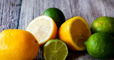 Dieta do suco de limão promete eliminar até 8 kg em um mês e evita envelhecimento precoce; conheça