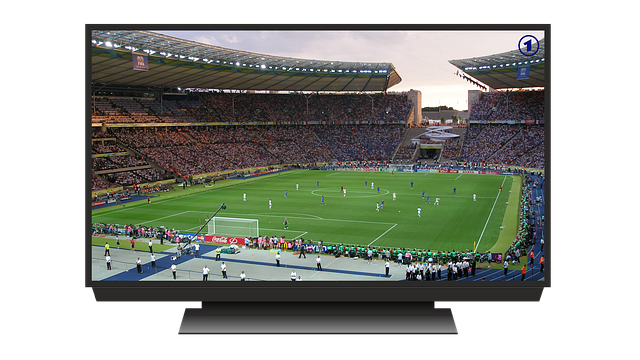 França x Bélgica: horário e como assistir ao vivo