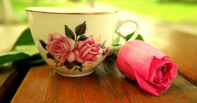 Chá de pimenta e gengibre: aposte na bebida que queima gordura