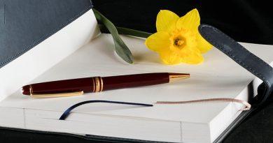 UFMA recebe inscrições para pós-graduação gratuita