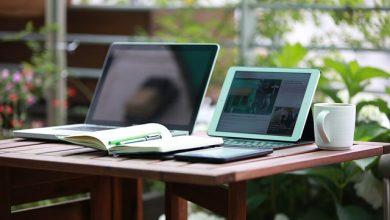 Especialização gratuita online para professores da Educação Básica recebe inscrições
