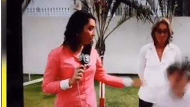Cachorro derruba veterinário em reportagem ao vivo