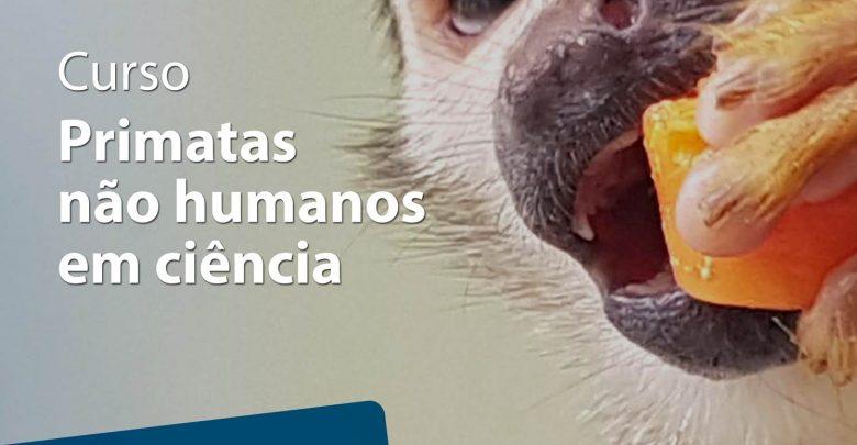 Fiocruz abre inscrições para o curso gratuito: 'Primatas não humanos em ciência'