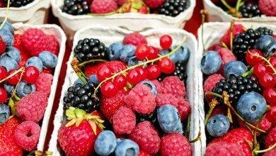 UFMG abre inscrições para mestrado em Alimentos e Saúde