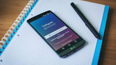 Instagram para pets: entenda como essa moda tem crescido
