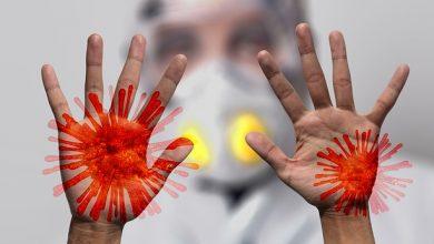 Coronavírus: o que é, sintomas e tratamento