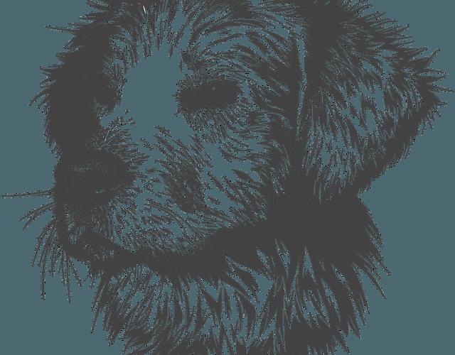 Curso de desenho online grátis da Faber Castell