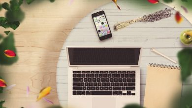 Inpev abre inscrições para curso online grátis de Sistema Campo Limpo